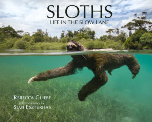 SLOTH_THP_038833_jakcover