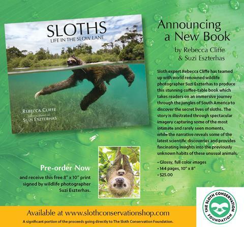 SlothBoock_Postcard_V21