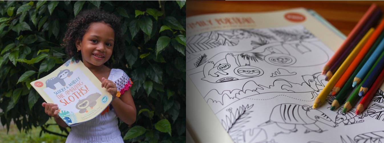 sloth book children