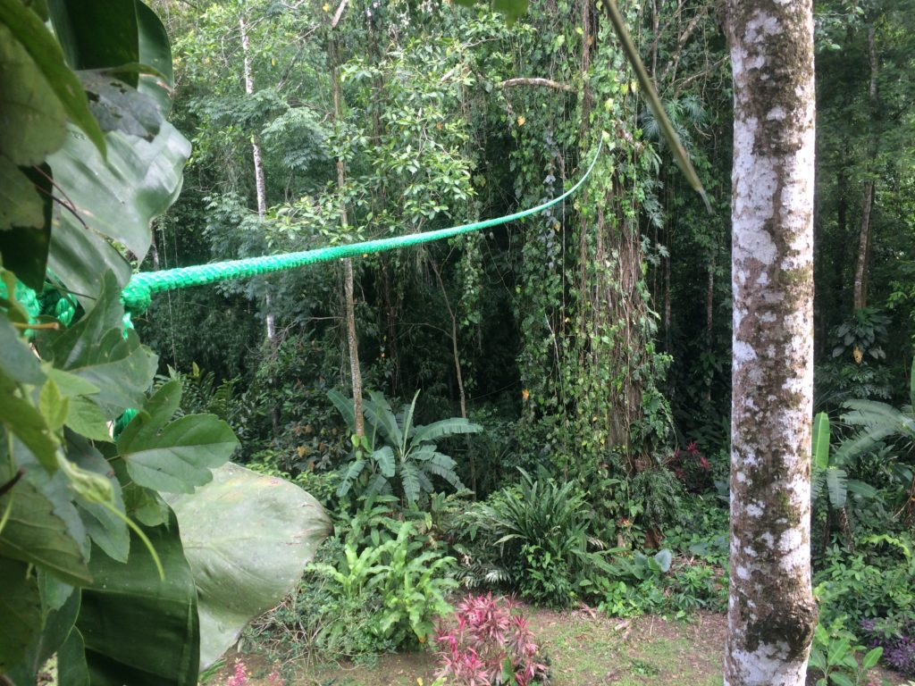 A single rope Sloth Crossing wildlife bridge