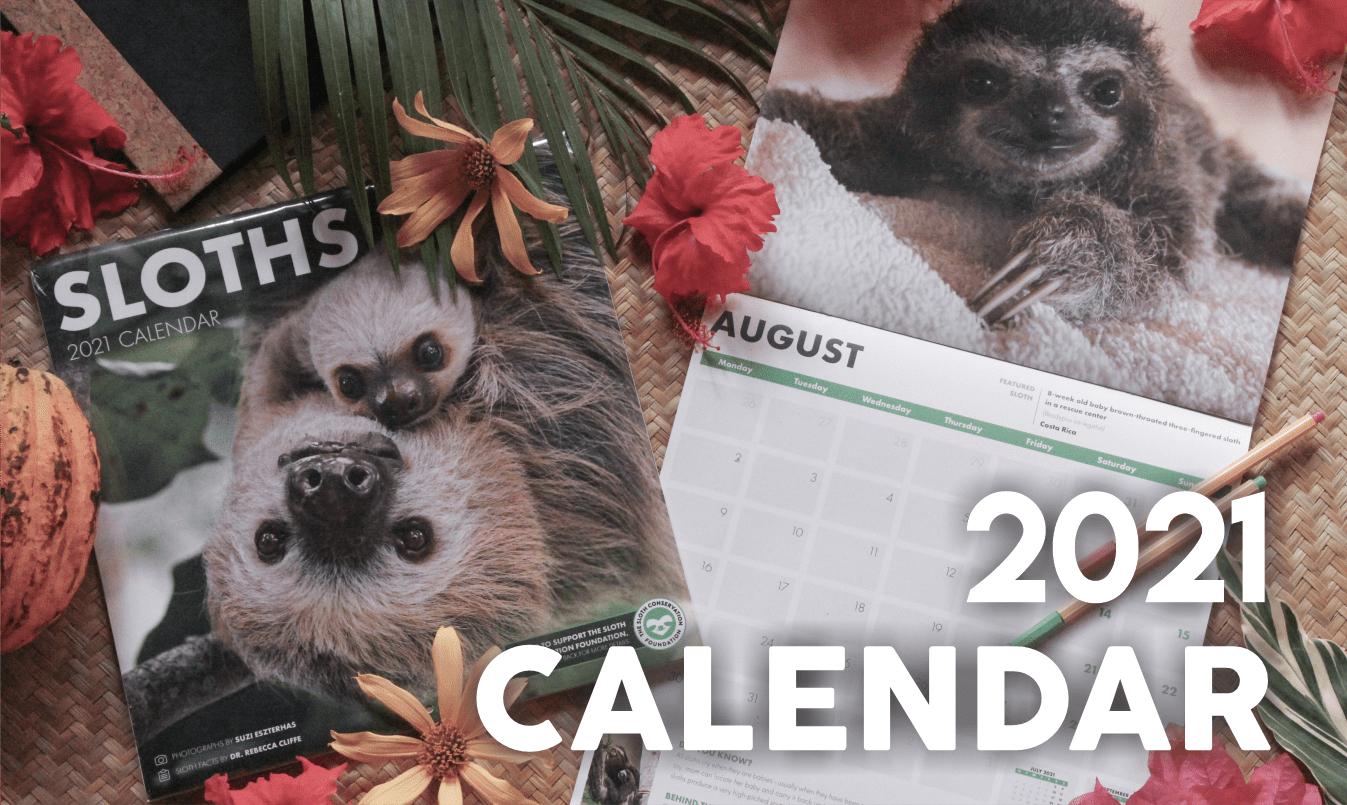 sloth calendar 2021