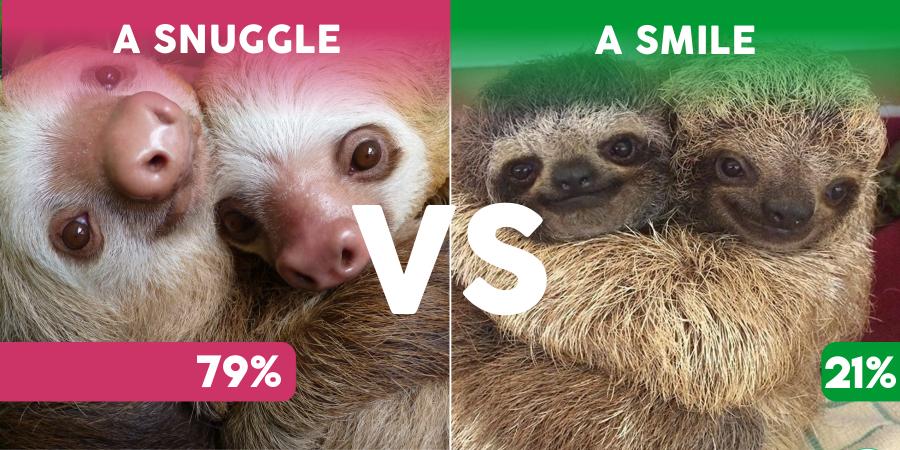 versus sloths