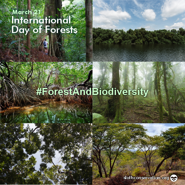 march 21 day of forests