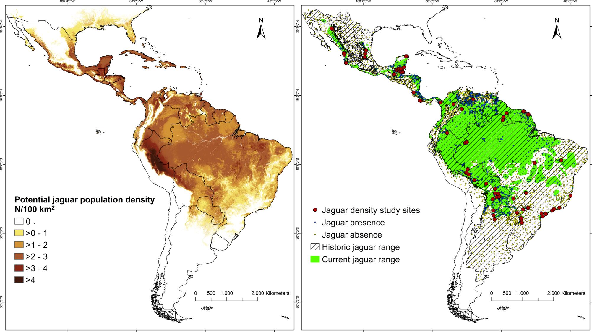 historic current range of jaguar