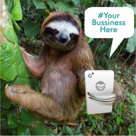 sloth tourism