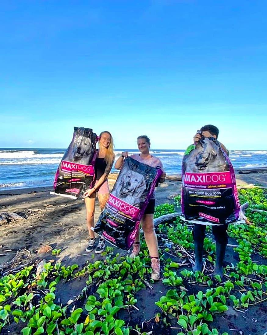 beach clean up tortuguero